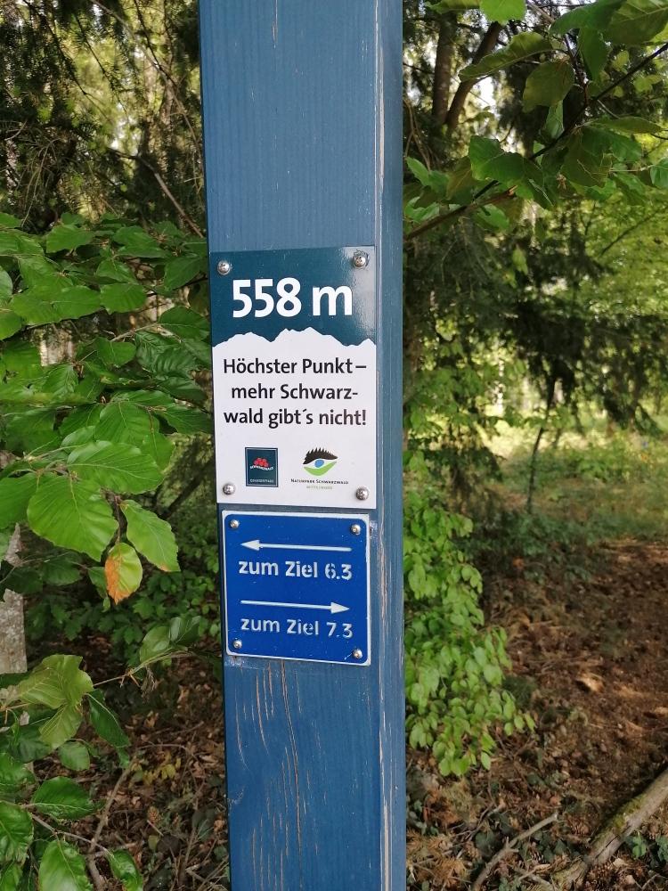 Höchster Punkt - mehr Schwarzwald geht nicht