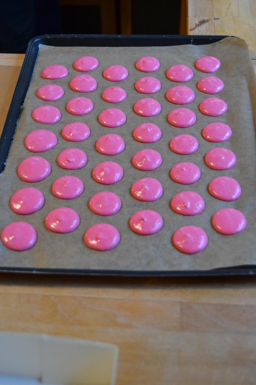 Macarons Macaroons