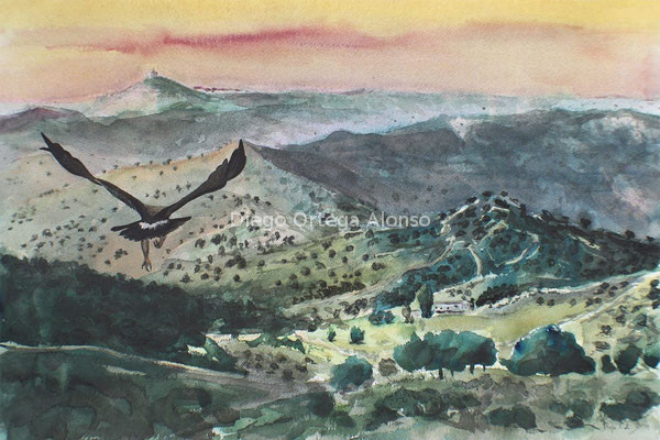 Santuario. Acuarela sobre papel. 57X38. 2014