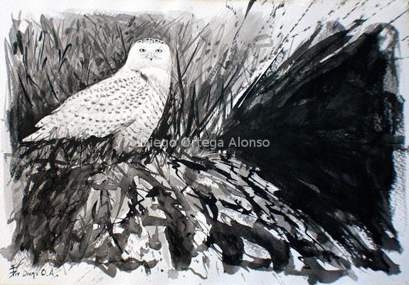Nieve Negra. Tinta china sobre papel. 46X32,5. 2014