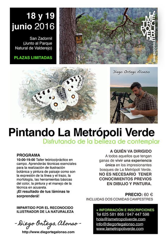 Taller de ilustración botánica y pintura de paisaje Pintando La Metrópoli Verde Diego Ortega Alonso San Zadornil Burgos