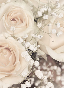 淡い色合いのお花のイメージ画像