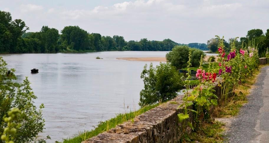 Bord de Loire - La Divatte