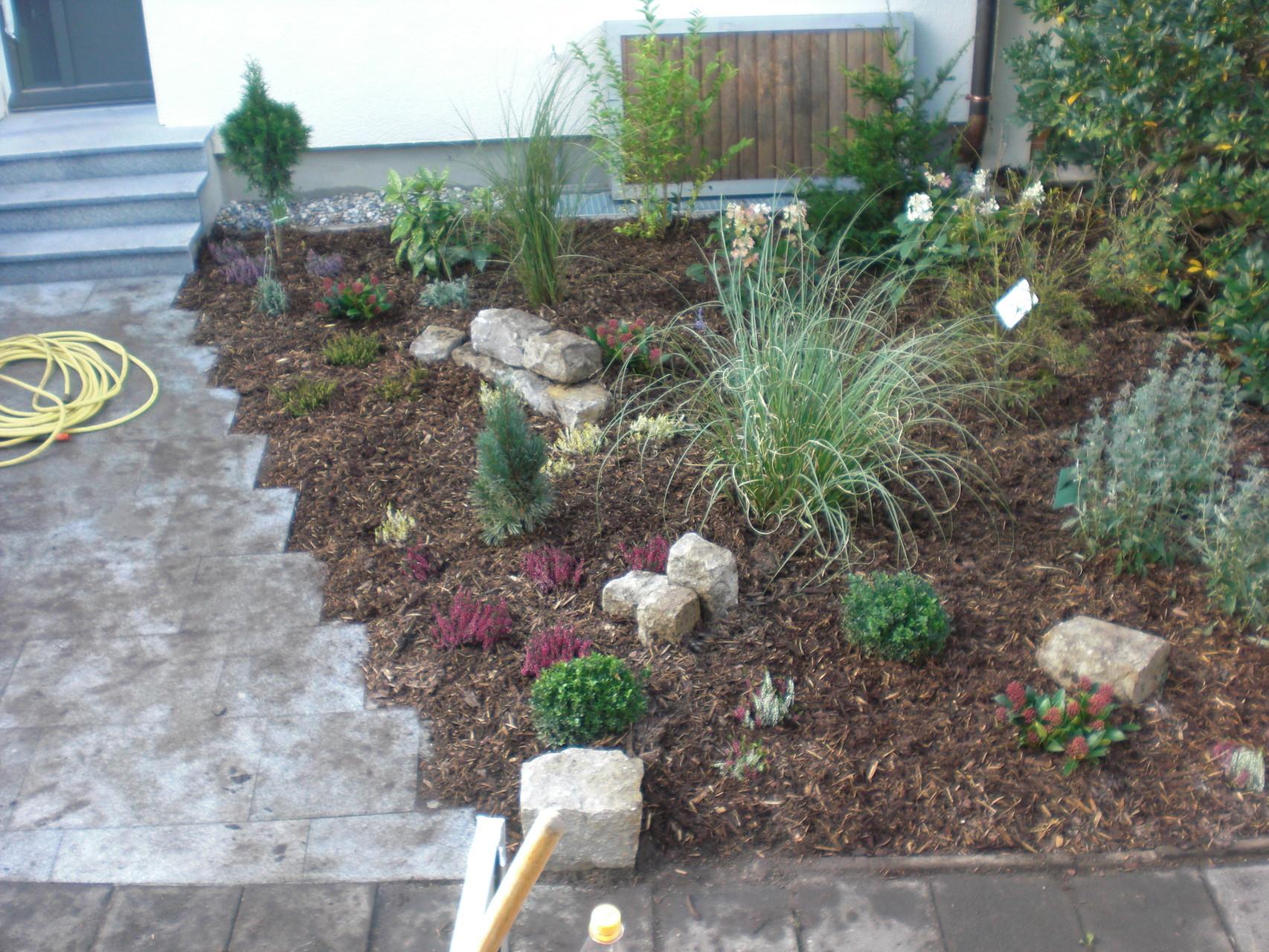 Pflanzungen und rollrasen gartengestaltung r bner schwabach for Gartengestaltung app