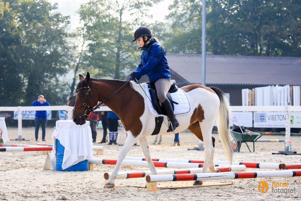 Pferdesporttage Aarberg 2015