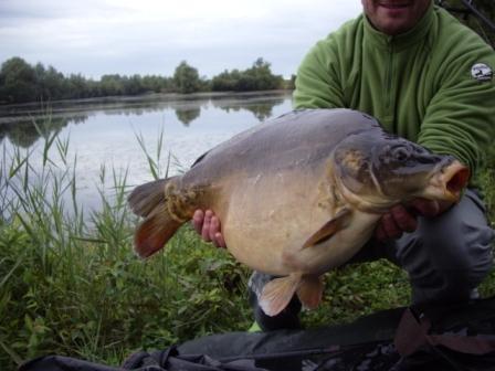 acrocarpe.com étang de pêche à la carpe en no-kill