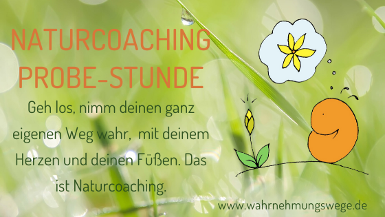 NaturCoaching Erfurt, Coaching in der Natur