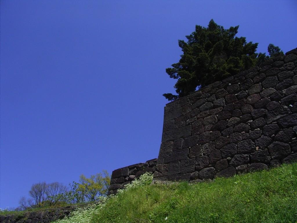 玉泉院丸公園の石垣。