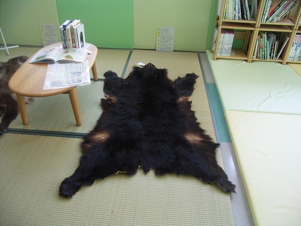 バンザイするクマ。爪も残っている。剛毛で座り心地は必ずしも良くない。