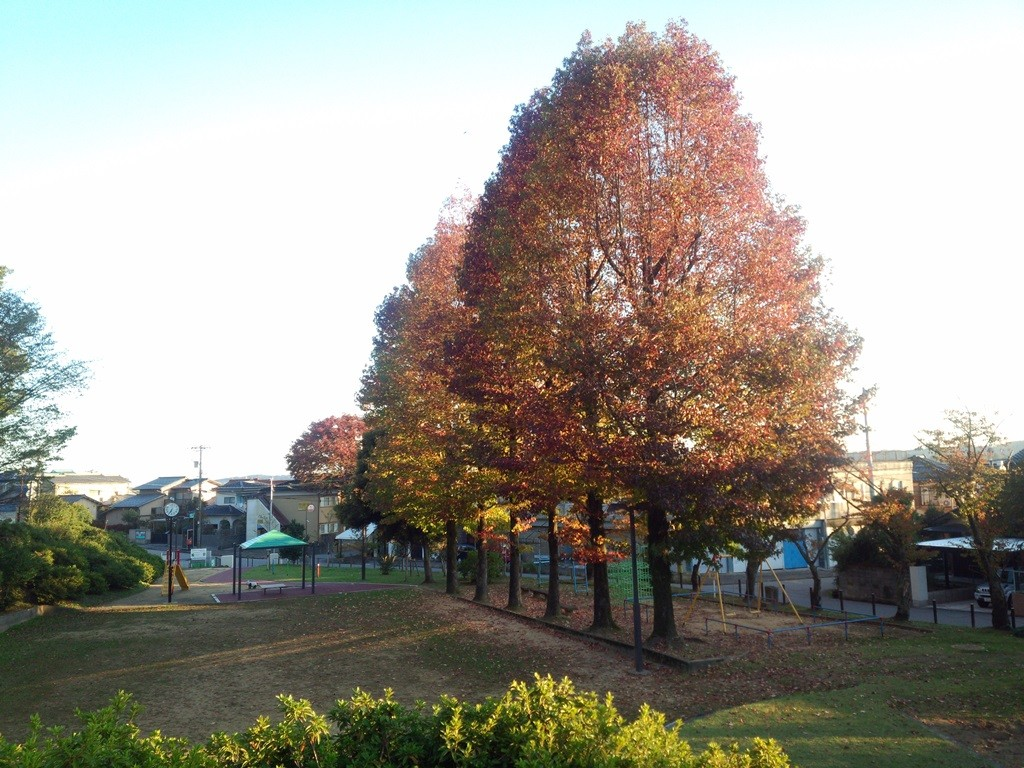 町内の公園