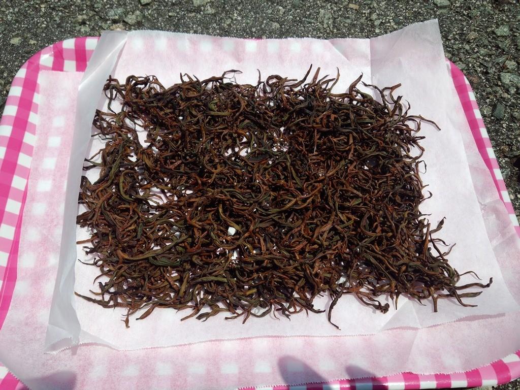 酸化発酵を終えたところ。乾燥させたら紅茶の出来上がり。