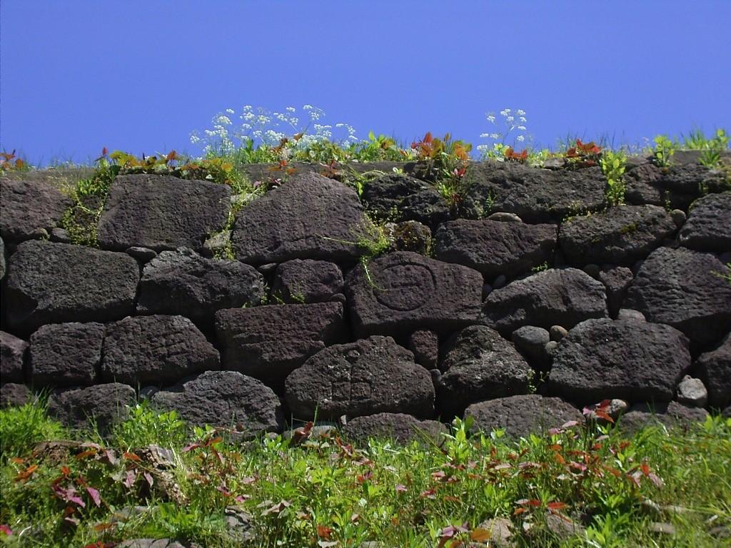 城を出て外から眺める玉泉院丸公園の石垣。印が刻まれた石をいくつも見つけることが出来る。