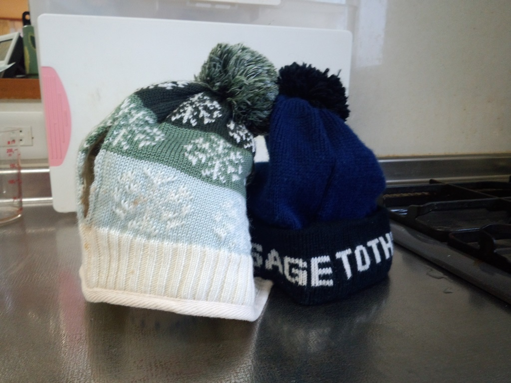 この季節なら帽子のティーコジーも不自然には感じませんね。