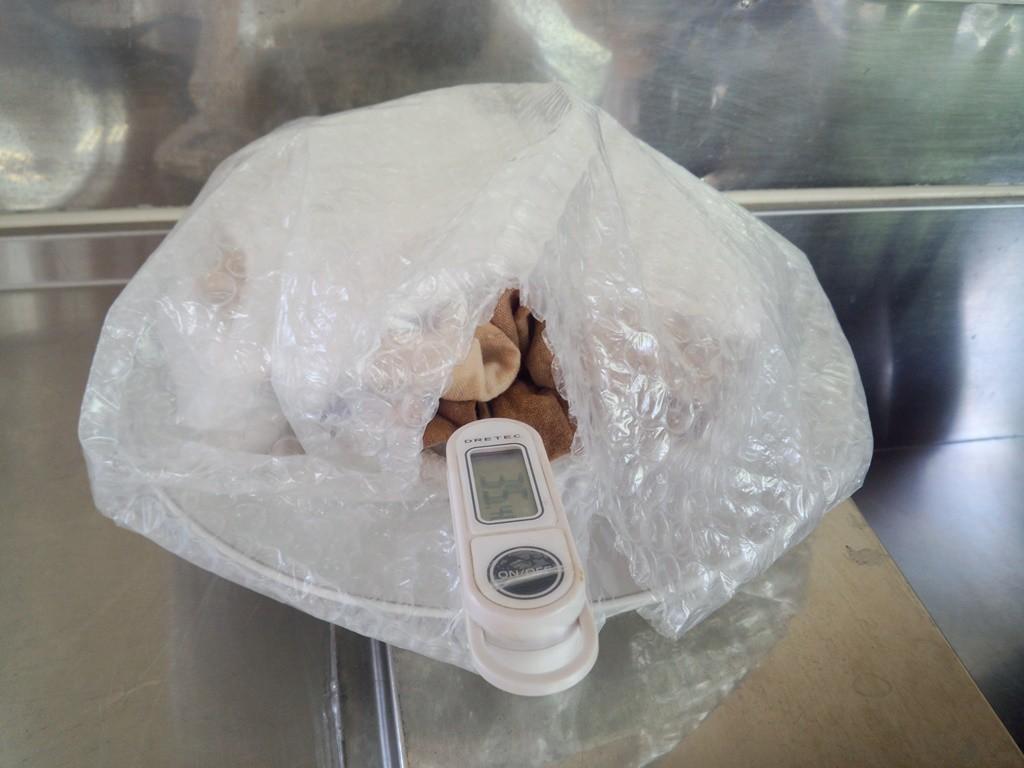 発酵中の検温、やや低いと感じたが