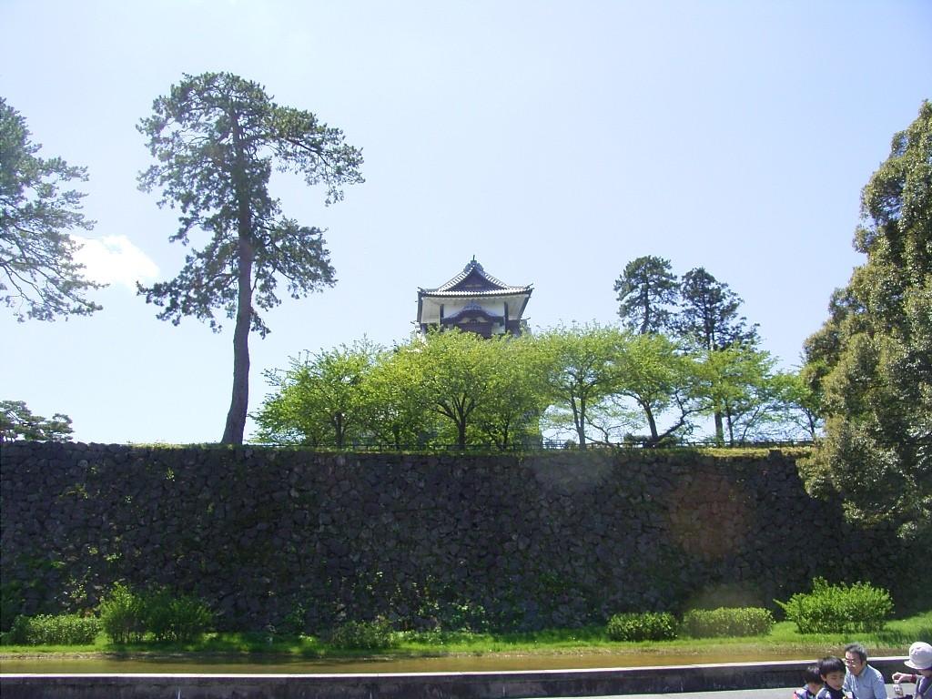 新丸広場から菱櫓のある三の丸広場を見上げる。石垣の縁に「サークル長屋」があり、授業に出ないで終日そこにいた。春は目の前の桜が散るの眺めていた。
