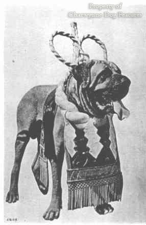 боевая собака Японии