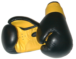 10oz PROFESSIONAL LEATHER BOXING GLOVES (ADULT & JUNIOR SIZES!)