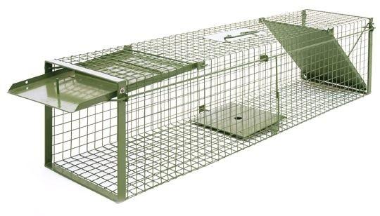 marder hunde katzen kaninchen wild usw sch dlingsbek mpfung von a z. Black Bedroom Furniture Sets. Home Design Ideas