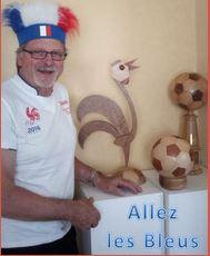 Euro 2016 St-Etienne