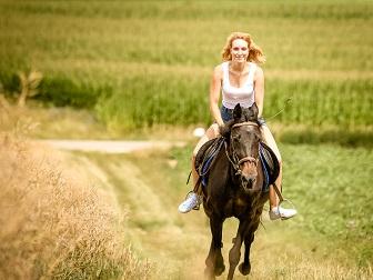 Pferdeshooting auf dem Stoppelacker fotografiert von Das Fotoatelier Regensburg - Fotograf Regensburg