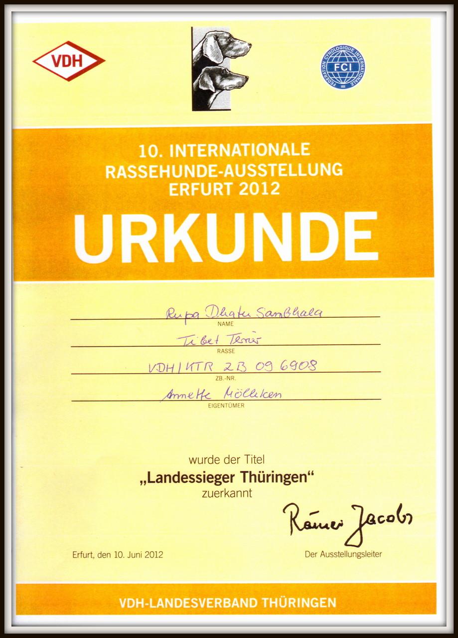Landessieger Thüringen