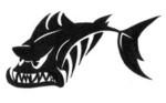 www.trueschenfischen.ch