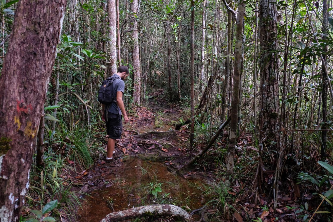 Auf einigen Wegen konnten wir die Wasserfestigkeit unserer geliebten Meindl Wanderschuhe testen