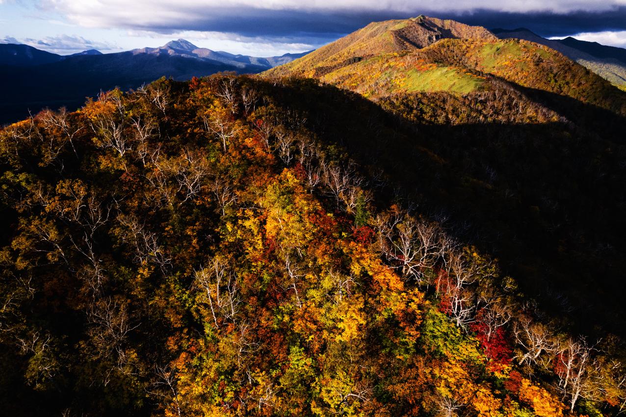 紅葉が進む東大雪の山並み