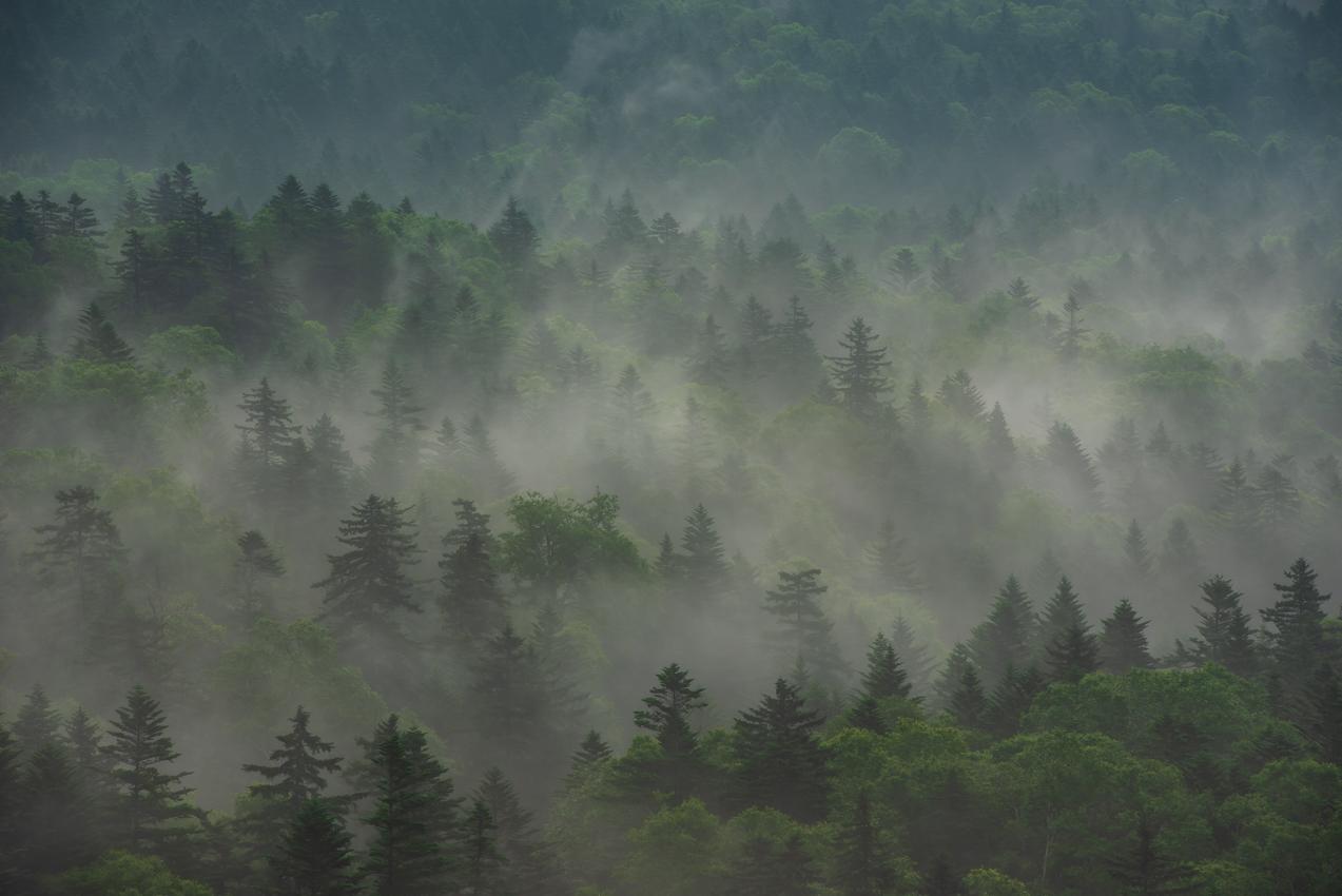 2019.7.25 北海道上士幌町 三国峠