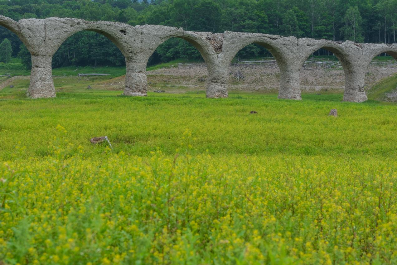 2019.7.31 北海道上士幌町 糠平湖 タウシュベツ川橋梁