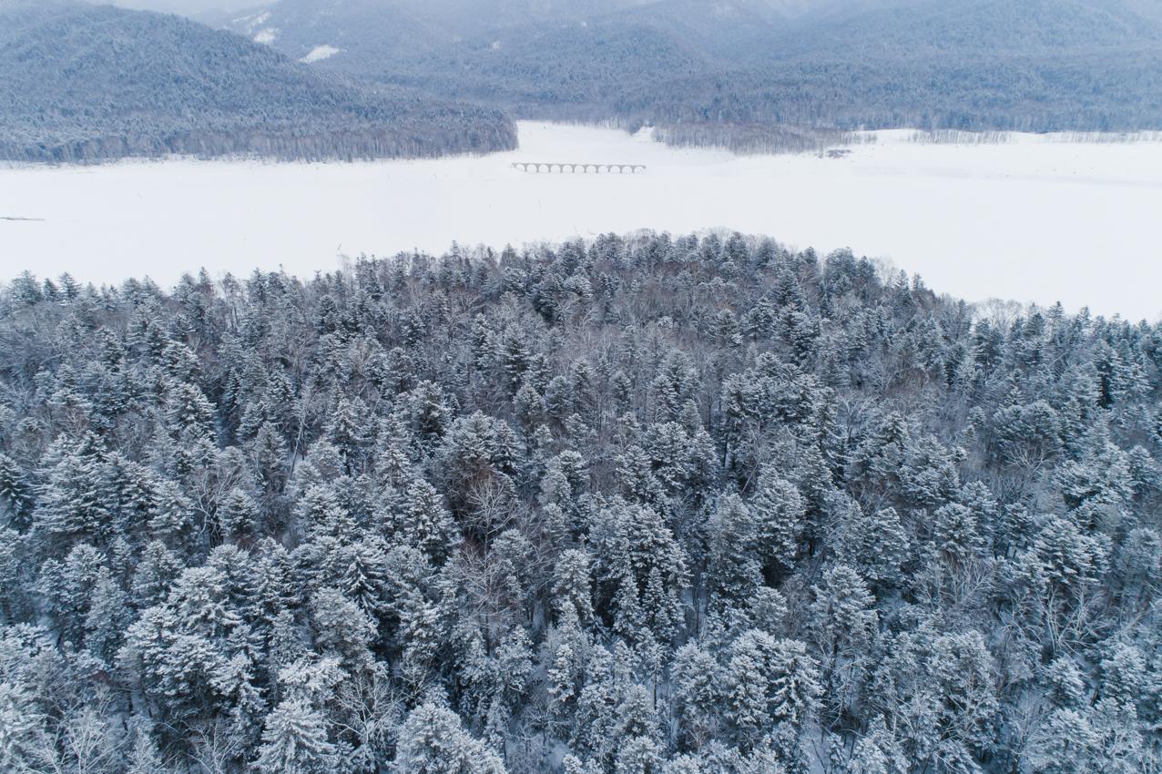 2019.2.7 上士幌町糠平湖 タウシュベツ川橋梁