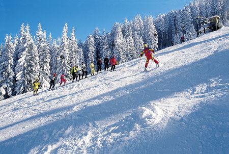 Alpinschilauf Dachstein-West