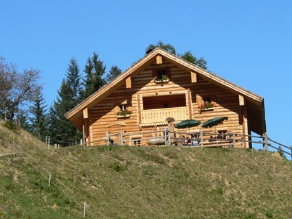 Rocheralm in Abtenau