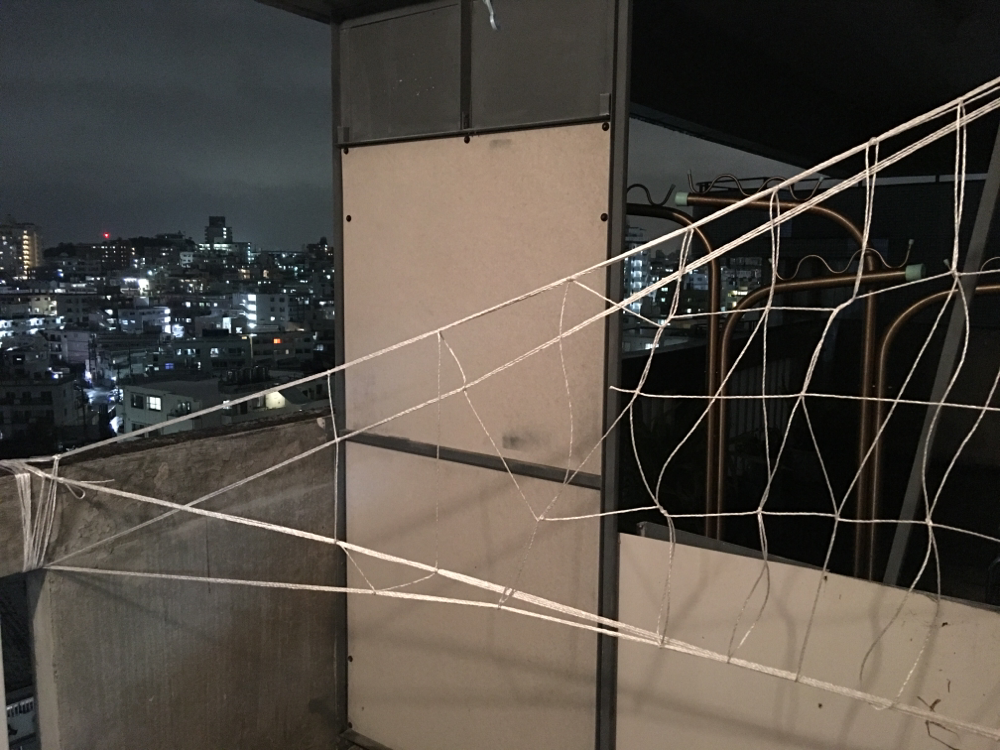 即席ロープ網設置。