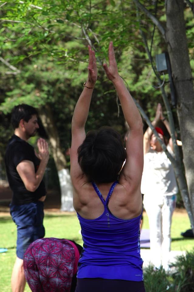 Posture Ardha Hastasana dans la salutation au soleil