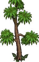 anc_comfy_tree