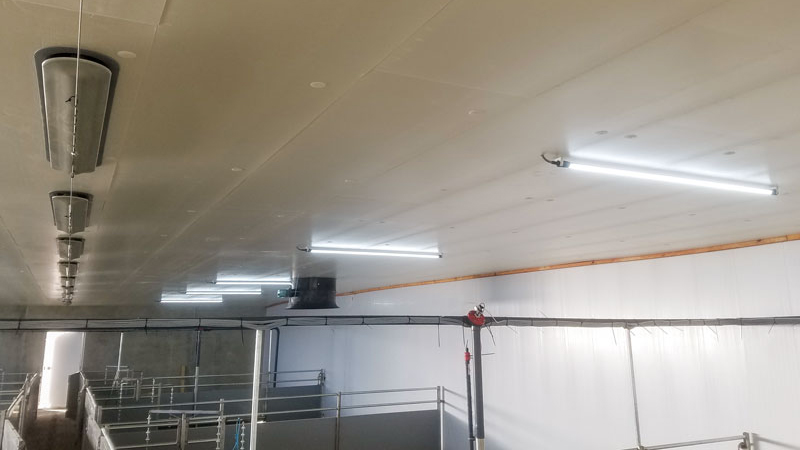 Stalleuchten IP67 LED
