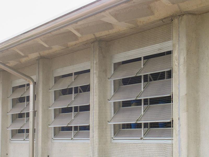 Steuerbare Fensterfassaden im Rinderstall