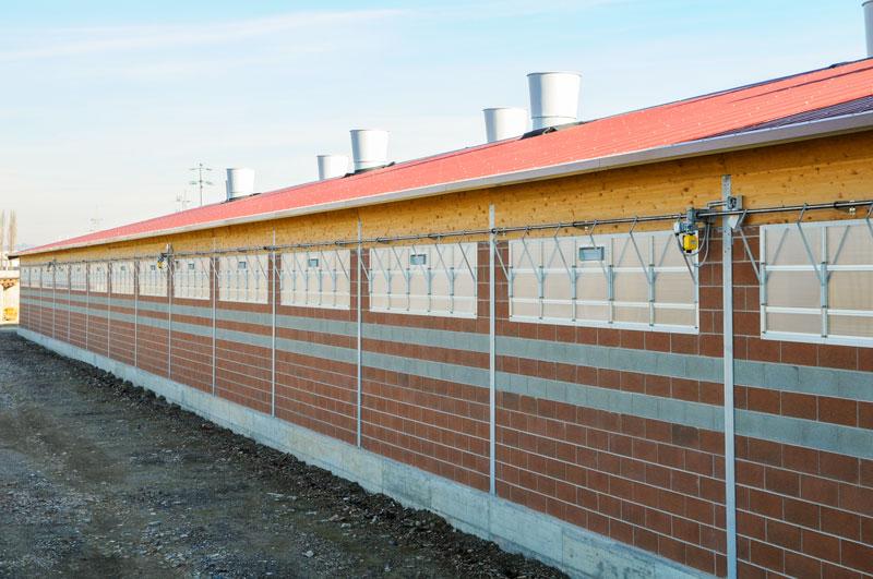 Fensterfassaden im Rinderstall |Menken & Drees