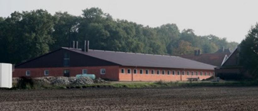 Stallklimatechnik für Sauenstall Hardt aus Coesfeld – Südlohn