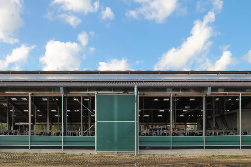 Steuerbare Curtains im Rinderstall |Menken & Drees
