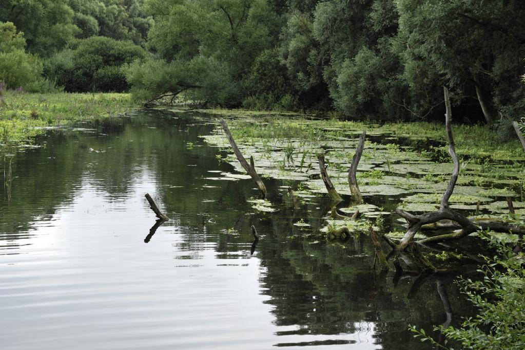 De l'eau et encore de l'eau au parc! - Richard Soberka