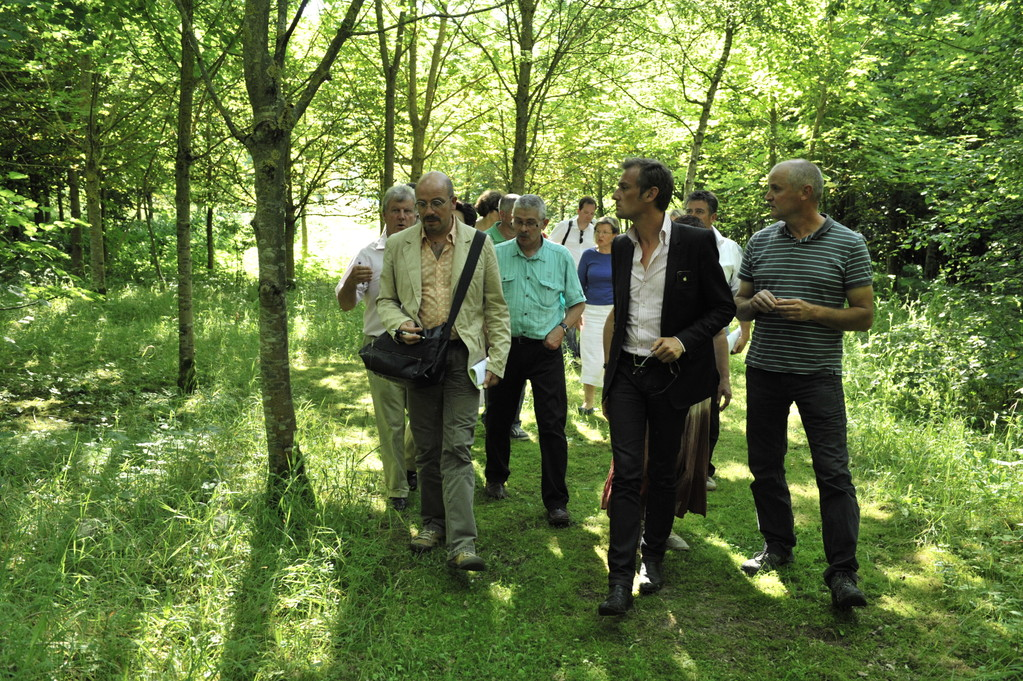 Le jury dans l'arboretum  - Richard Soberka