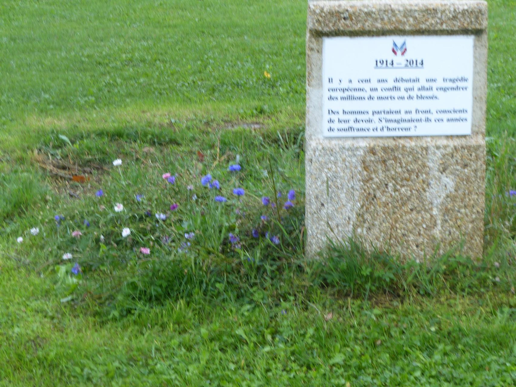 Plaque commémorative et bleuets de Bousies