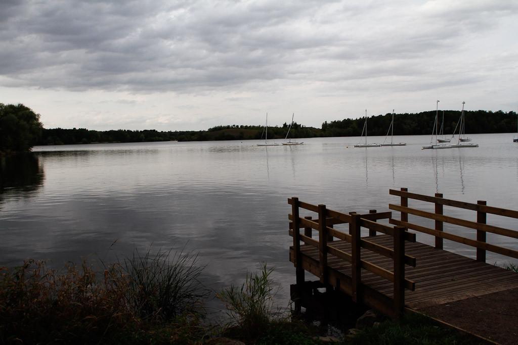 L'étang de Condé sur l'Escaut - Sophie Mayeux