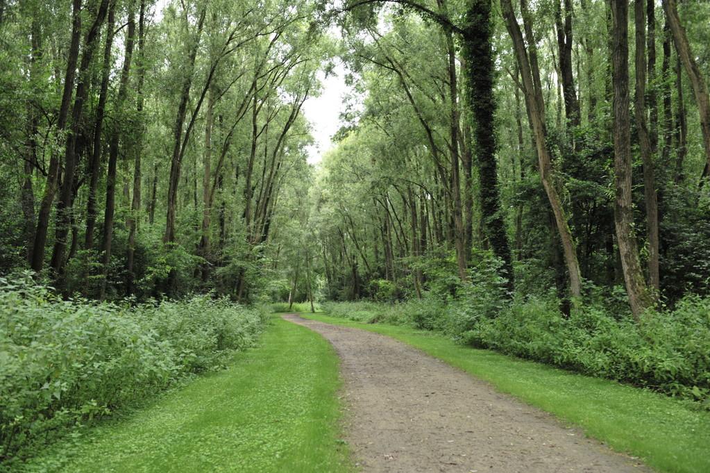 Chemin de randonnée du parc de la Deûle - Richard Soberka