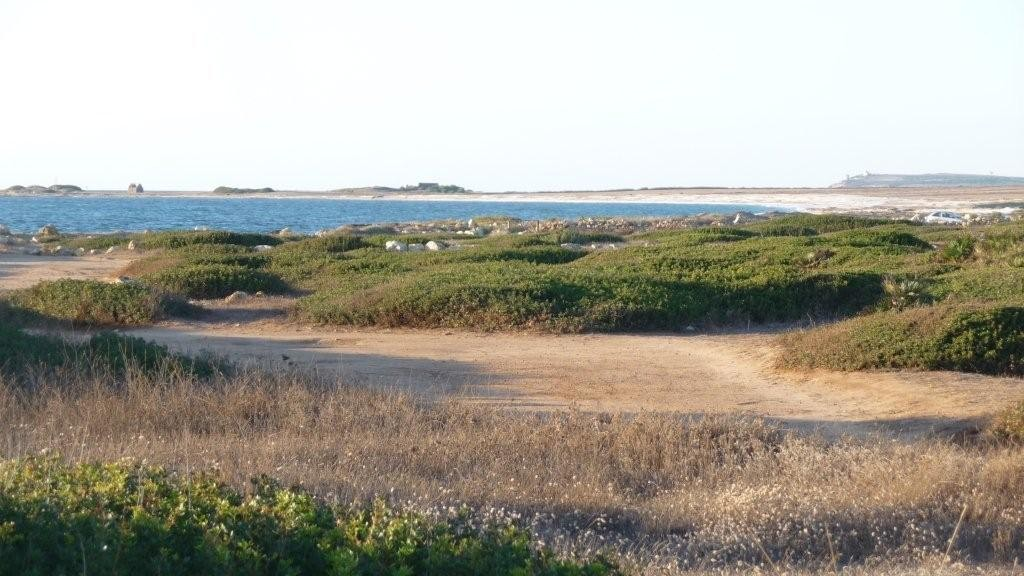 Halbinsel Sinis