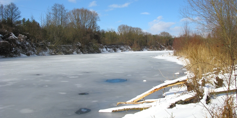 Westweiher im Winter