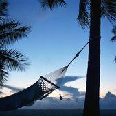 Hängematte unter Palmen - Progressive Muskelentspannung