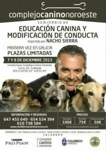 Vídeo seminario en Galicia 2011